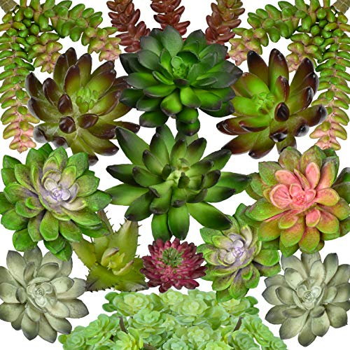 Seeko Artificial Succulent Plants - 15 Pack - Create Realistic Succulent Arrangements, Fake Succulent Planters, and Faux Succulent Decor