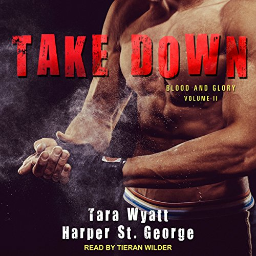 Take Down audiobook cover art