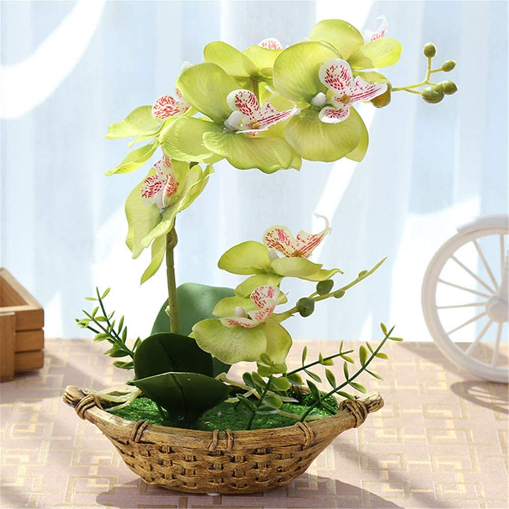 正規取扱店 CGBF-Orchids Artificial Flowers in Silk 品質検査済 Artif Pots Phalaenopsis