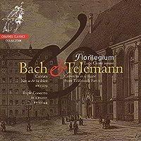 Bach, J.S.: Cantata BWV209; Telemann: Concerto by Florilegium (2008-11-11)