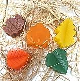 Fresh Handmade Mini Autumn Leaves All Natural Hand Glycerin Shea Butter Soap 5 Bars