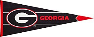 Team Sports America NCAA Pennant Flags