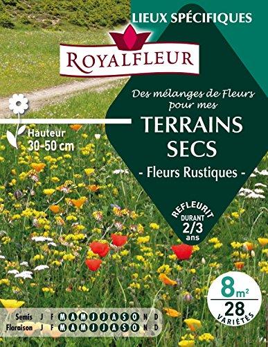 Royalfleur PFRE08684 Graines de Mélange de Fleurs mes Terrains Secs 8 m²