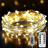 66ft 200LED Copper Wire USB Powered String Fairy Lights, Twinkle Waterproof Lights Remoted