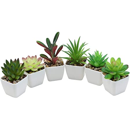 Gomaihe Artificial Succulents Plants Set Of 6 With Grey Pot 6 8cm Small Indoor And Outdoor Fake Plants Plants For House Office Desk Bathroom Kitchen Decorative Exquisite New House Gift Amazon Co Uk Kitchen