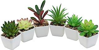 Nubry Mini Faux Succulent Plantes Artificiel Plastique Succulentes en pot Assortiment Plantes pour la Décoration de la Tab...