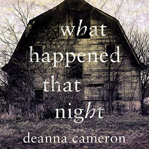 What Happened That Night audiobook cover art