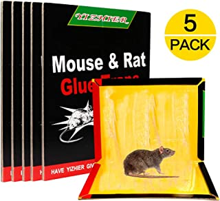 Catchpro Mouse Trap, Best Mouse Glue Boards Super Sticky Rat Traps for Mice, Large Rat Glue Pads, Mouse Trap Sticky Pads with Peanut Butter Large Capture Area,Catch Mouse Indoor and Outdoor 5 Pack