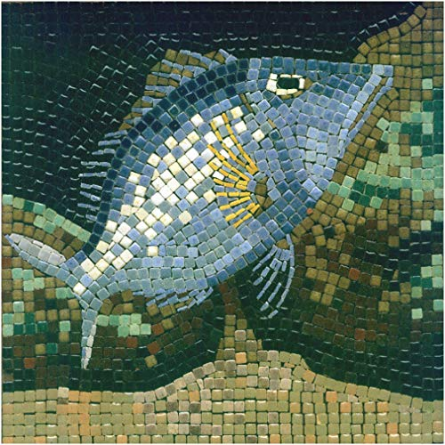 kit mosaico DIY manualidades, 20x20cm Poisson-4