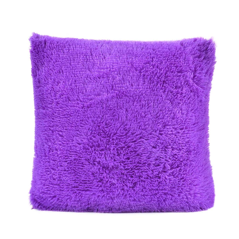 非難通知するルーキーHomeMiYN 枕カバー ピローケース 正方形 柔らかい 肌触り良い 暖かい 洗える 吸湿 冬にピッタリ 11色 45x45cm