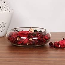 Home Centre Splendid Glass Spring Bowl - Silver