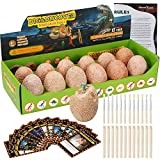 Dino Egg Dig Kit-12 Dinosaur Eggs Dino Egg Excavation Kit for Dinosaur Birthday Theme Party Science STEM Toys Easter Paleontologist Gift Preschool Educational Toys for Boys Girls Kids