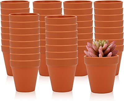 3.5 Inches / 48 pcs Plastic Plant Pots, Gardening Containers, Planters, Perfect for Indoor and Outdoor Decoration, Garden, Kitchen, Flower, Succulents (Yellow)