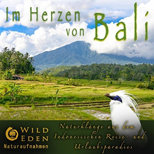 Im Herzen von Bali (Naturklänge aus dem Indonesischen Reise- und Urlaubsparadies)