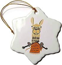 """3dRose Funny Cute Llama Knitting Snowflake Ornament, 3"""""""