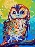 ARSETS DIY 5D Diamond Painting Kits for Adults Kids, Round Full Drill Crystal Rhinestone Diamond Paintings Accessories Colorful Owl Animal Pictures Arts Craft for Home Wall Decor 30x40cm/12x16in