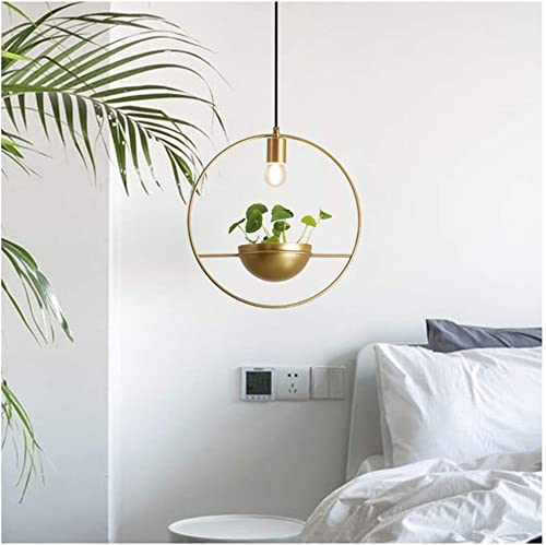 pendentif lumière Simple Modern LED Chandelier Plant oren Round Bar Hang Lamp Window Balcony Single Head Cailing lumièreing
