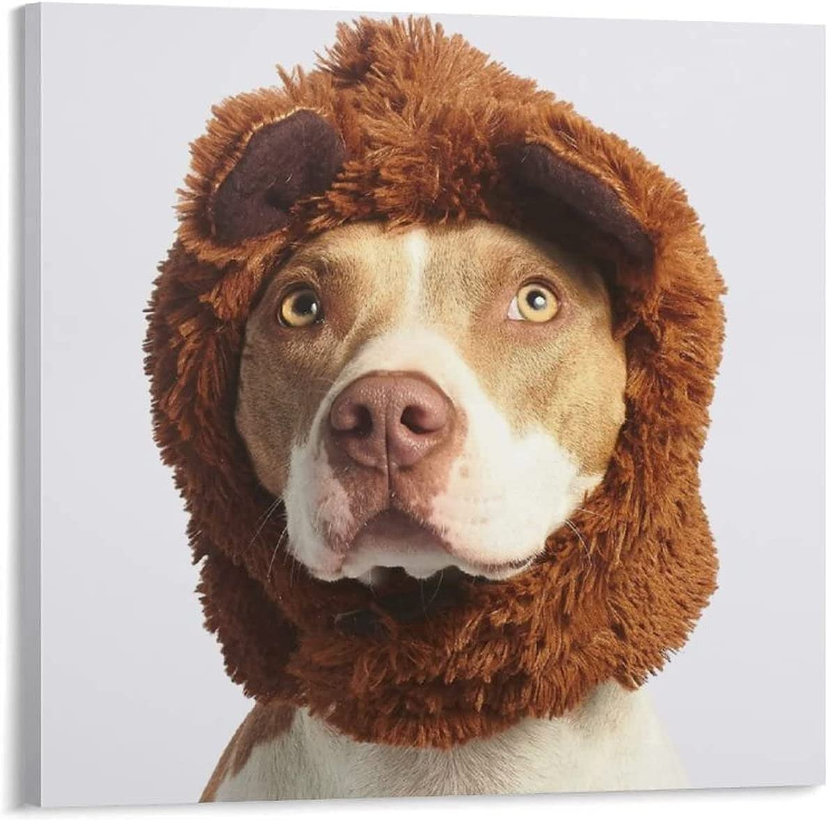 JDCUBAO High quality new Cash special price Brown and White American Costume Terrier Bull with