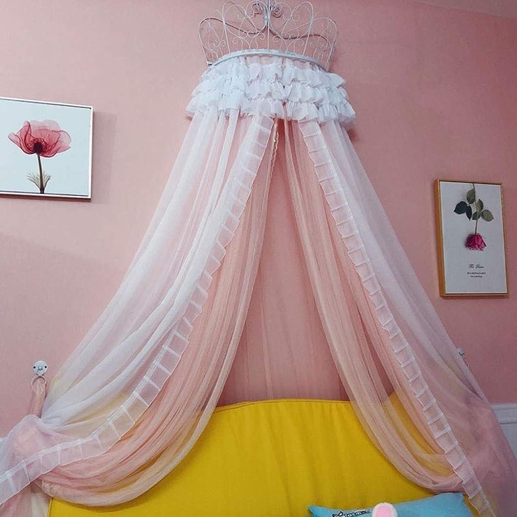 櫛クリープ菊D-chuangman 子供のためのベッドキャノピー、綿蚊帳ぶら下げカーテン、赤ちゃんの屋内屋外プレイ読書テント、ベッド&ベッドルームの装飾、防虫ネット保護(ピンク) (Size : 2mx2m)