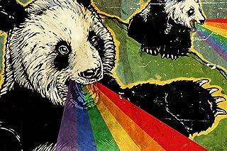 OSDFN 3000 Pezzi Puzzle -Panda Rainbow Spray-Bambino Regalo per Adulti decompressione Giochi al Coperto Art Decor Puzzle i...
