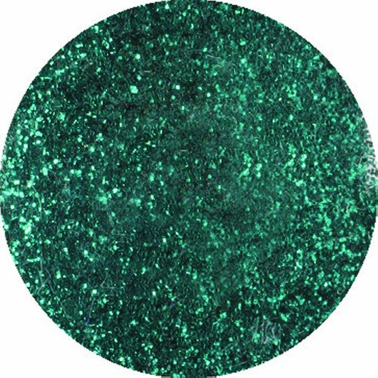 精神腹痛望むビューティーネイラー ネイル用パウダー 黒崎えり子 ジュエリーコレクション グリーン0.05mm