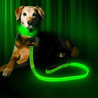Vizpet LED Dog Leash - USB Light UP Rechargeable Nylon Dog Leash - 47.2 Inch with 3 Flash Modes and Metal Buckle - Keeps Your Dog Safe All The Time
