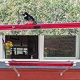 GFITNHSKI Mejor alimentador de colibríes, alimentador de aves para jardín al aire libre, alimentador de aves de tubo largo de abertura pequeño con polo de reposo, alimentadores de colibríes fáciles de