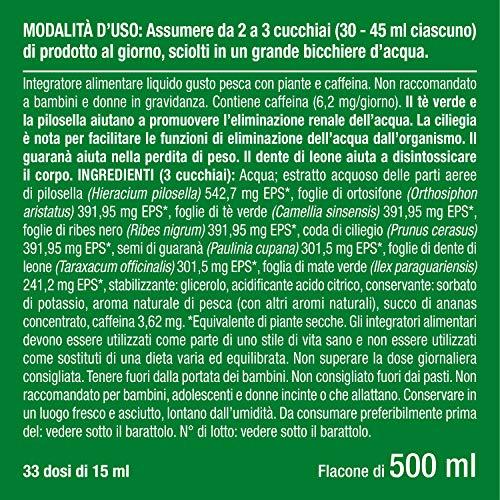 Dietyslim | Drenante Forte Dimagrante Da Bere | Formula Naturale 10 Piante Concentrate Contro La Cellulite Effetto Detox E Drenaggio Immediato
