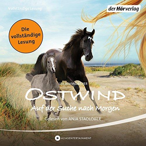 Auf der Suche nach Morgen audiobook cover art