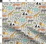 Dschungel, Zoo, Elefant, Giraffe, Panda, Löwe, Tiger