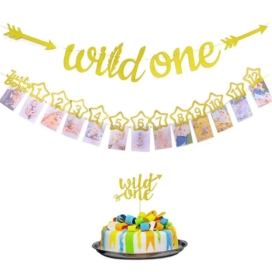Glittery Wild One Banner, Glitter 12 Month Photo Decorations and Gold Wild One Sign Cupcake Topper Decoration for First Birthday Party of Baby Boy or Girl Supplies for Baby Shower Tribal Themed Photo
