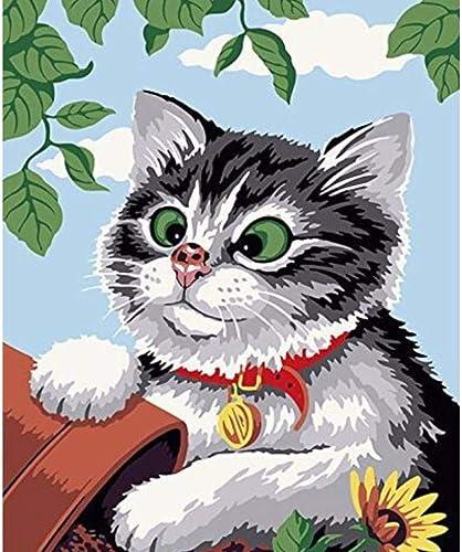 LIWeißKY Nette Katze DIY Digital-Malerei Nach Zahlen Moderne Tier-Leinwand-Kunst-Bild Für Hauptwand-Grafik , Mit Rahmen, 50x60cm