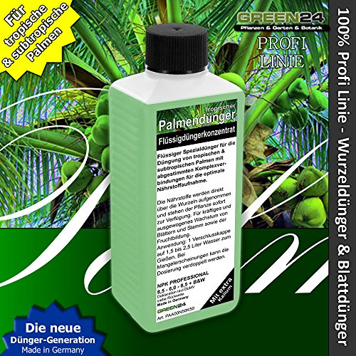 GREEN24 Palmendünger Profi Linie Dünger für Palmen Wurzeldünger + Blattdünger HIGH-TECH!