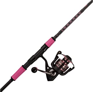 Penn Passion Spinning Reel and Fishing Rod Combo
