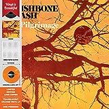 Pilgrimage - Vinyl Orange Translucent