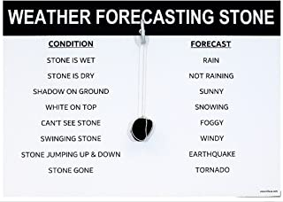 Best weather forecasting stone Reviews