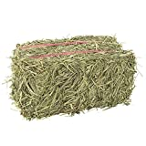 Grandpa's Best Timothy Hay Mini Bale, 10 Lbs