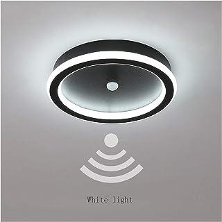 Ceiling Light جسم الإنسان التعريفي ضوء الممر ضوء ممر ضوء مدخل صاعة ضوء درج التحكم الصوتي ضوء السقف for Hallway (Color : Wh...