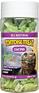 Best cactus for tortoise Reviews