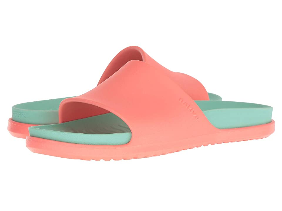Native Shoes Spencer LX (Popstar Pink/Glass Green) Sandals