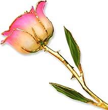 Long Stem Dipped 24k Gold Trim White Pink Rose In Gold Gift Box