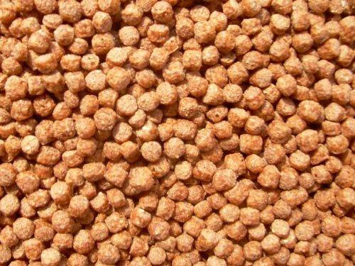 Koi Color Pellets mit Astaxanthin 2mm 6000ml, Fischfutter, Teichfutter