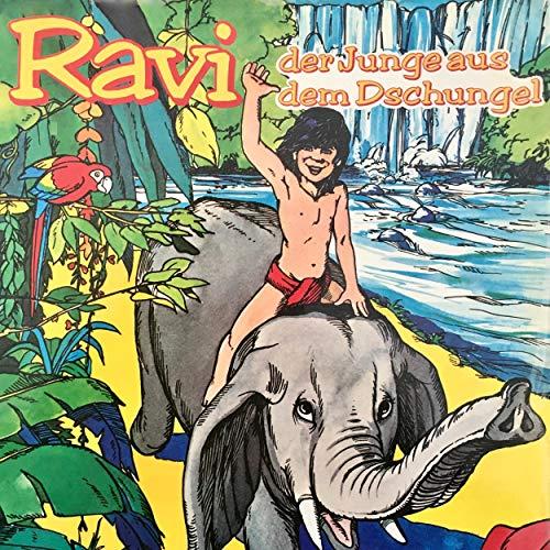 Ravi, Der Junge aus dem Dschungel cover art