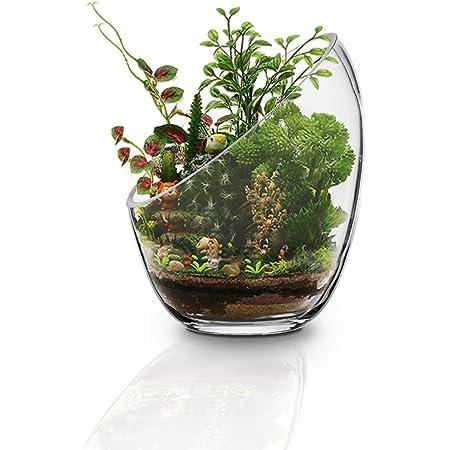 MornBee Cuenco grande de cristal transparente, 17,5 x 14 cm, maceta de cristal de apertura grande, soporte para plantas de aire, terrario de vidrio