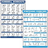 QuickFit Dumbbell Workouts and Stretching Exercise Poster Set - Laminated 2 Chart Set - Dumbbell Exercise Routine & Stretching Workouts (18' x 27')