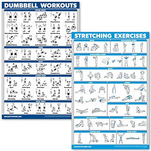 QuickFit Kurzhantel-Übungsposter-Set – laminiertes 2-Diagramm-Set – Kurzhantel-Übungen & Stretch-Workouts, LAMINATED, 18