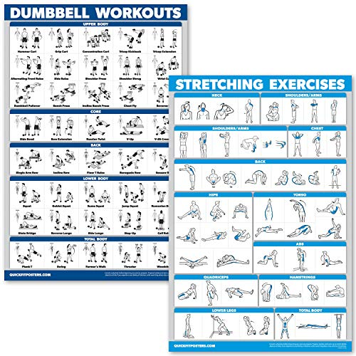 QuickFit Kurzhantel-Übungsposter-Set – laminiertes 2-Diagramm-Set – Kurzhantel-Übungen & Stretch-Workouts, LAMINATED, 18