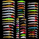 BAIKALBASS Bass Fishing Lures Kit Set Topwater Hard Baits Minnow Crankbait Pencil VIB Swimbait for Bass Pike Fit Saltwater and Freshwater (560-56pcs)