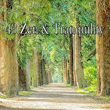 43 Zen & Tranquility