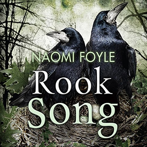 Rook Song audiobook cover art